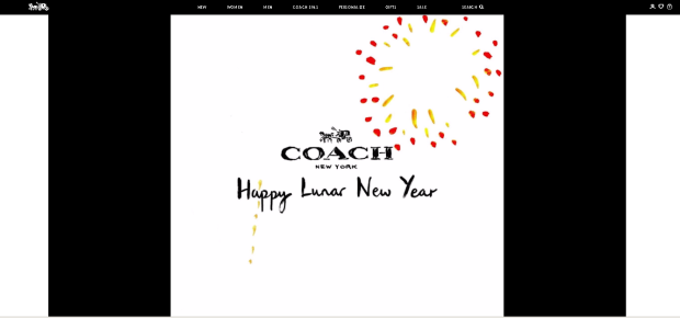 coach-site-video